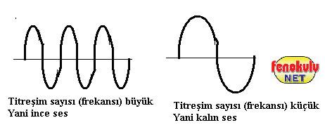 ... bir sesten ayıran özellikler vardır.Sesin özellikleri şunlardır