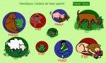 Beslenme şekline göre hayvanlar(etkinlik)