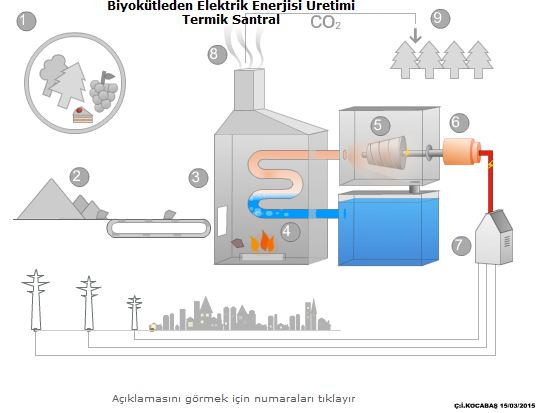 Biyokütleden Elektrik Enerjisi Üretimi