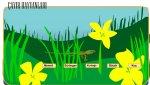 Çayır Hayvanlarını Sınıflandırma (Etkinlik)
