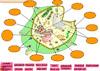 6. sınıf Fen ve Teknoloji Dersi Hücre ve organelleri konusunu etkileşimli Türkçe animasyonlar