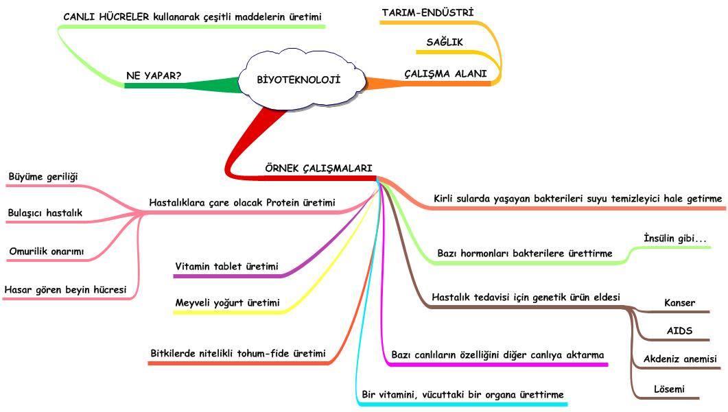 Biyoteknoloji ne yapar, çalışma alanı nedir, örnek çalışmaları nelerdir?