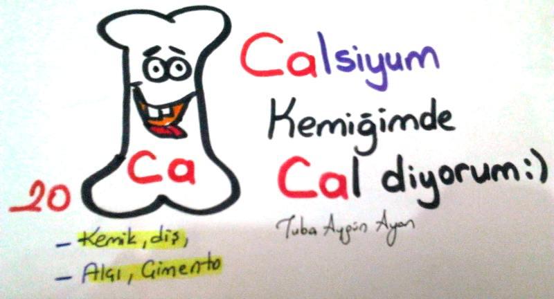 Calsiyum Elementi