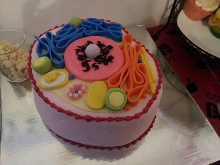 Hücre Pasta