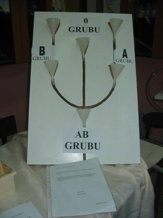 Kan Gurupları Elektrikli Modeli