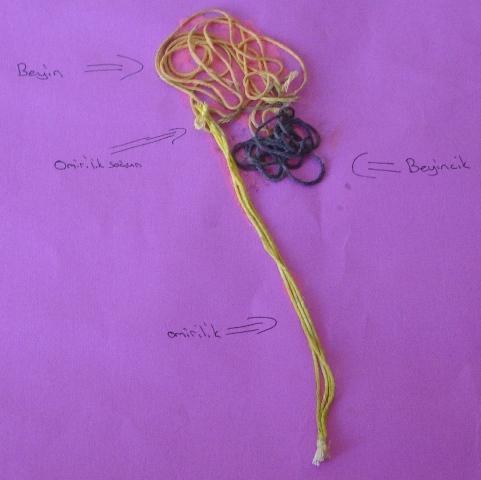 Merkezi Sinir Sistemi Modeli