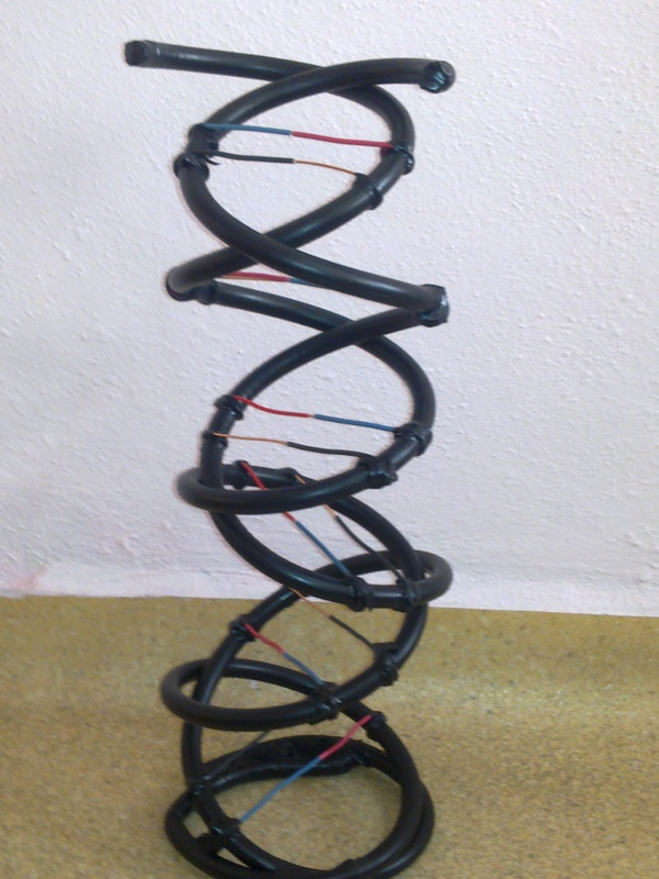 DNA Modeli