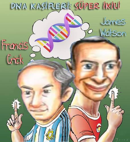 DNA kaşifleri :)