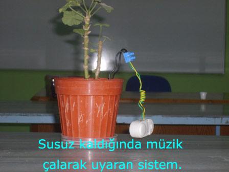 Bitki Sulama