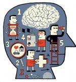 Beynin görevleri