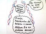 DNA Eşlenmesi- Karikatürleri4