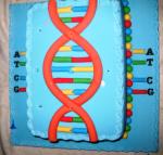 DNA pastası