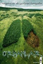 Dünyamızın Akciğeri ormanlar