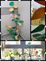 Fiziksel ve Kimyasal Değişim Ağacı