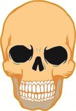 Kafatası Kemiği