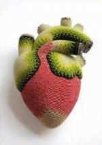 Kalp modeli