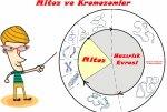 Mitoz ve Kromozomlar