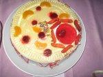 Hücre modeli pasta yarışması