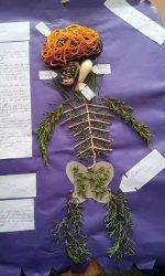 Sinir Sistemi Modeli