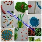 Virüs bakteri modellerimiz...