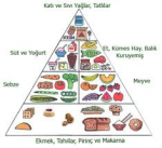 besin piramidi