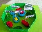 bitki hücresi modeli