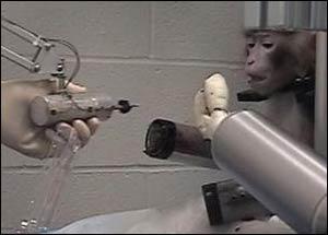 Düşünce gücüyle robot kolu hareket ettirildi