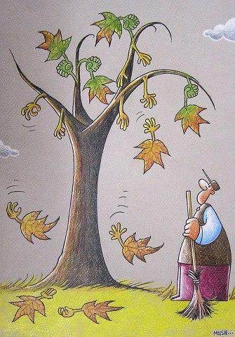 Yaprakları süpürmeyin ağaçlar onları geri alıyor.