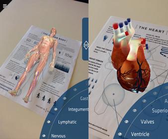 Anatomy 4D Programı ile Vucut ve Kalbinizi ücretsiz olarak 4D olarak keşfedin