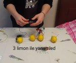 Limon Pili Deneyi