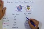 Hücre 3