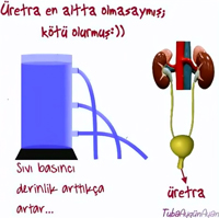 Sıvıların basıncı nelere bağlıdır?