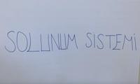 6. SINIF SOLUNUM SİSTEMİ 1