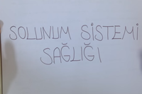 6. SINIF SOLUNUM SİSTEMİ 4