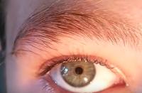 Göz bebeği